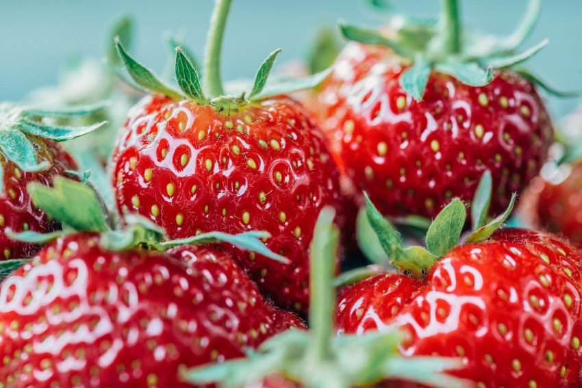 closeup photo of strawberry fruits