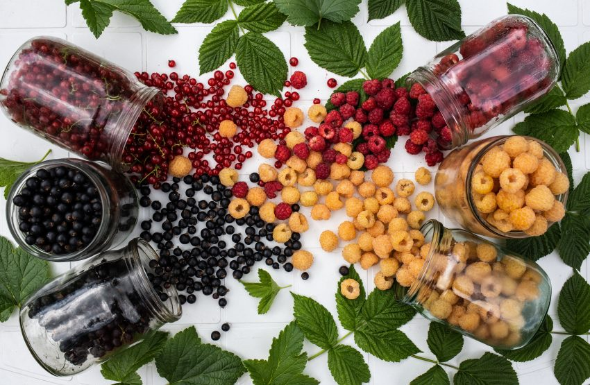 flatlay photography of variety of berries